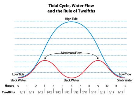 00b8efdc8d A logical consequence of this fluctuation in the rate the tide comes in and  goes out is that the water currents being driven by these tide changes will  also ...